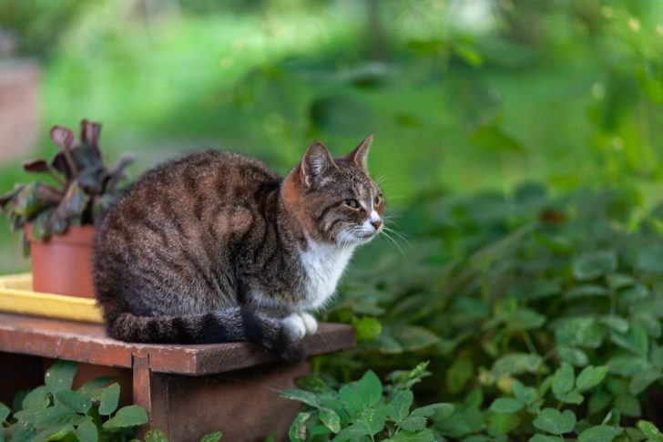 猫背で姿勢が悪い悪影響とは