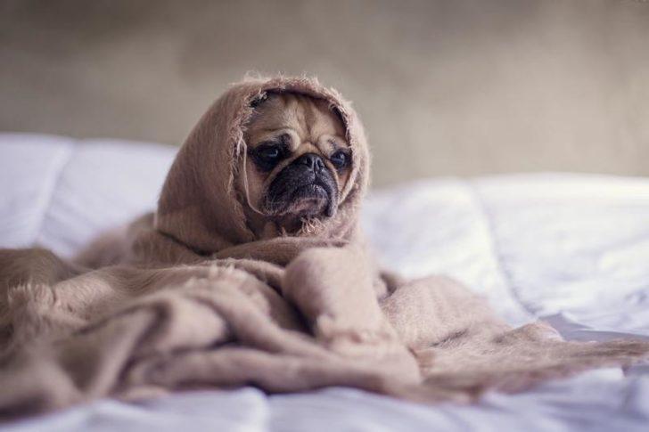 早起きの勉強が続かない理由